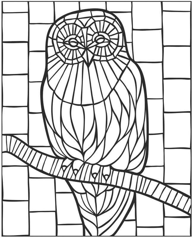 650x802 Welcome To Dover Publications Eclectic Wildlife