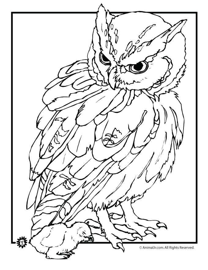 680x880 Realistic Coloring Pages Of Animals Page Realistic Animal Outlines