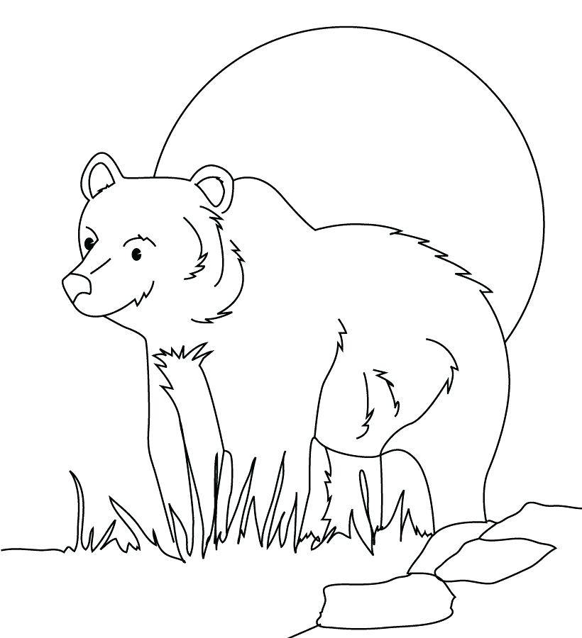 820x900 Animal Planet Coloring Pages Coloring Forest Animals Picture Ideas