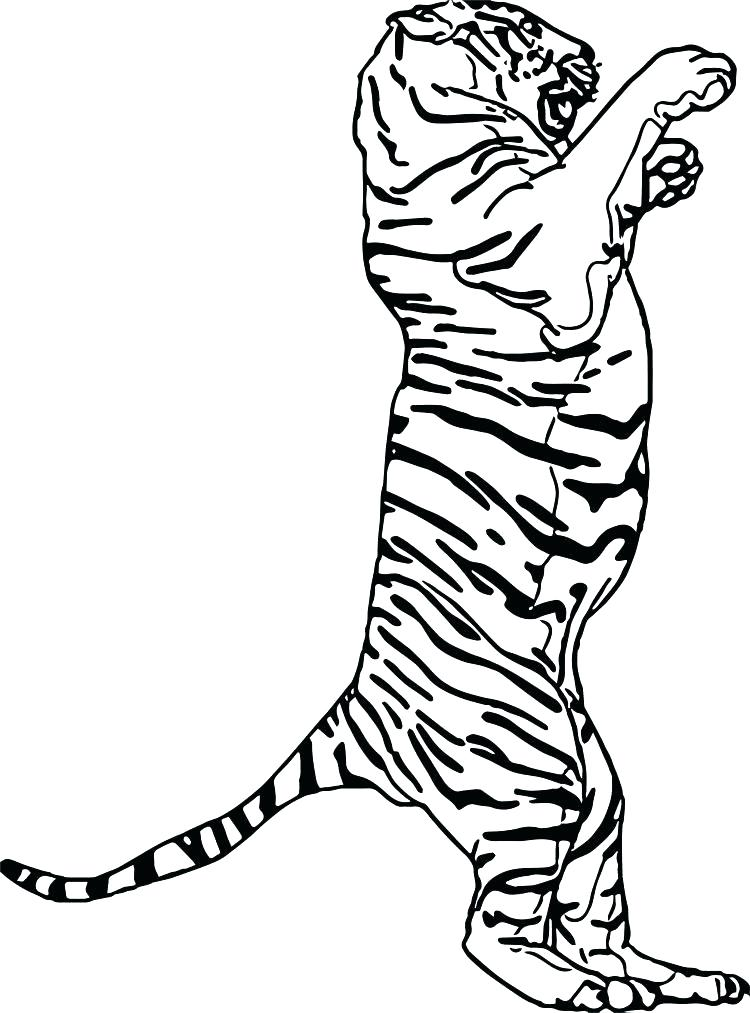 750x1013 Footprint Coloring Page Track Coloring Pages Footprint Coloring