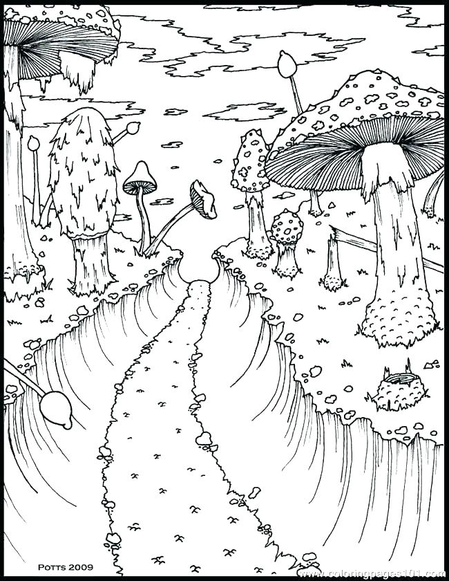650x840 Printable Track Forest Animal Printable Coloring Pages Page