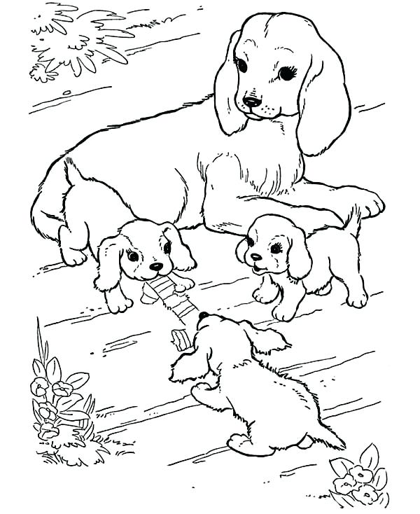600x734 Coloring Pages Animals And Their Babies Coloring Pages