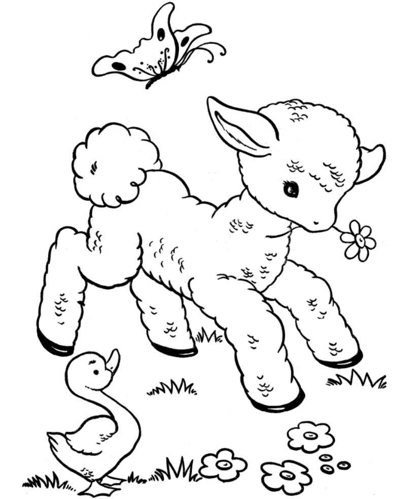 804x984 Printable Coloring Leap Frog Coloring Pages Leapfrog Baby Animal