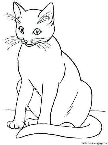 375x500 Coloring Page Of A Cat Medium Size Of Cats Coloring Pages Cute