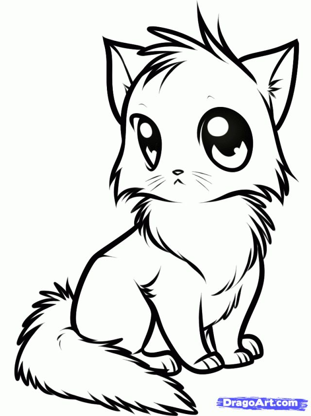 640x856 Cute Anime Cat Coloring Pages Anime Cat