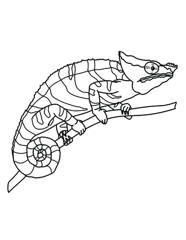 600x775 Eyes Coloring Pages Chameleon Amazing Eyes Coloring Pages Anime