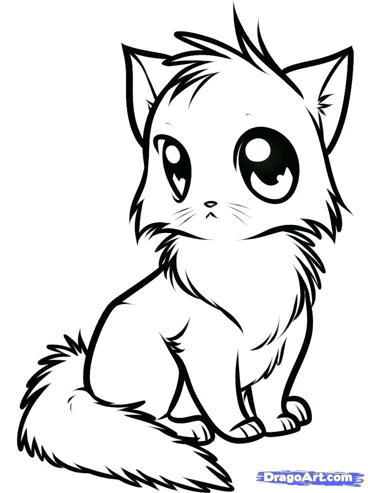 736x984 Anime Coloring Pages Online Cat Coloring Pages Anime Cat Coloring