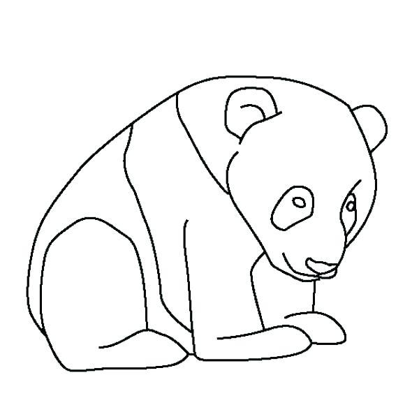 600x600 Cartoon Giant Panda Cartoon Baby Giant Panda Cartoon Giant Panda