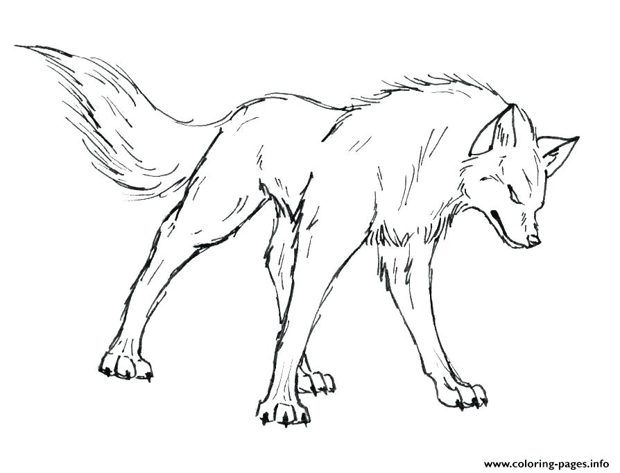 894x682 Wolf Coloring Page Luxury Wolf C Pages About Remodel Pages Free