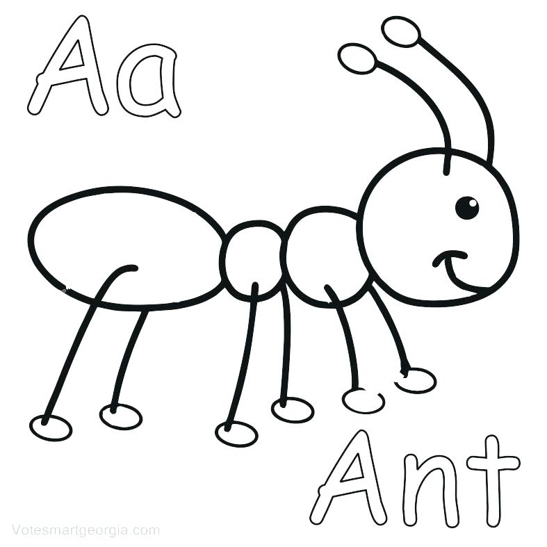 787x787 Anteater Coloring Page Ant Coloring Page Ant Coloring Page