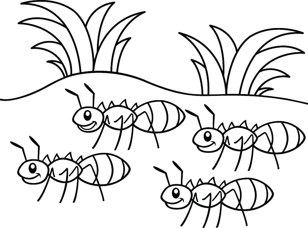 1023x756 Ants Coloring Page Ant Coloring Pages Free Printable Coloring Ant