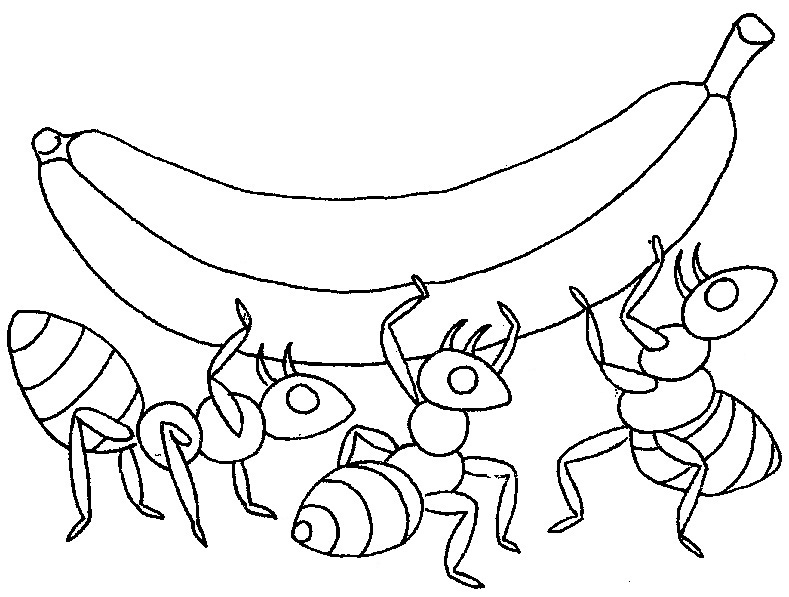 789x597 Ant Coloring Page Printable Ant Coloring Pages Coloring Me Ideas