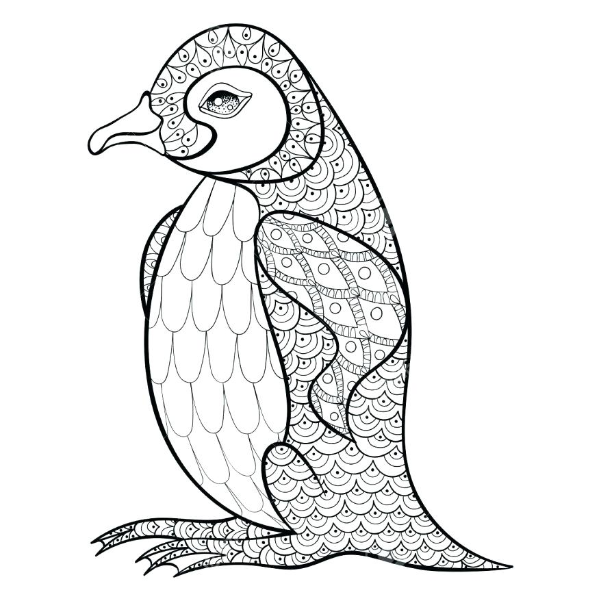 878x878 Antarctica Coloring Pages Family Of Emperor Penguin On The Snow