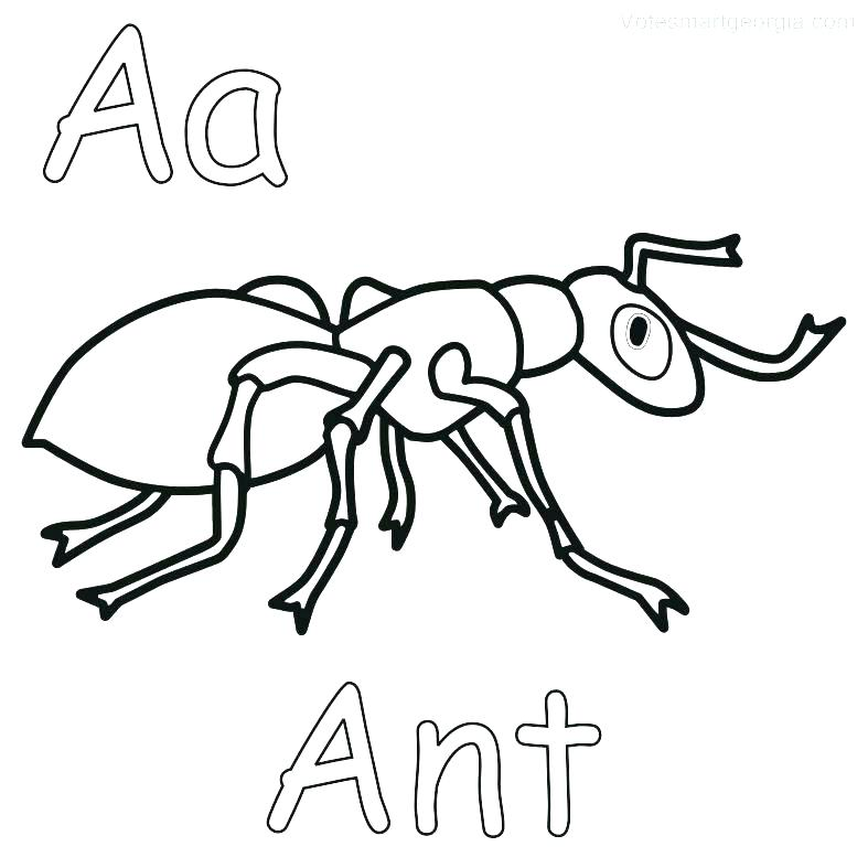 Anteater Coloring Page at GetDrawings.com | Free for ...
