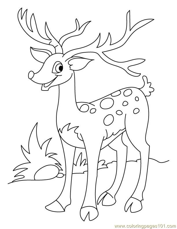 612x792 Deer Horn Looking Big Coloring Page