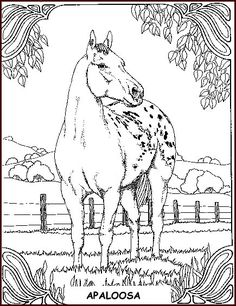 236x306 Free Horse Coloring Pages