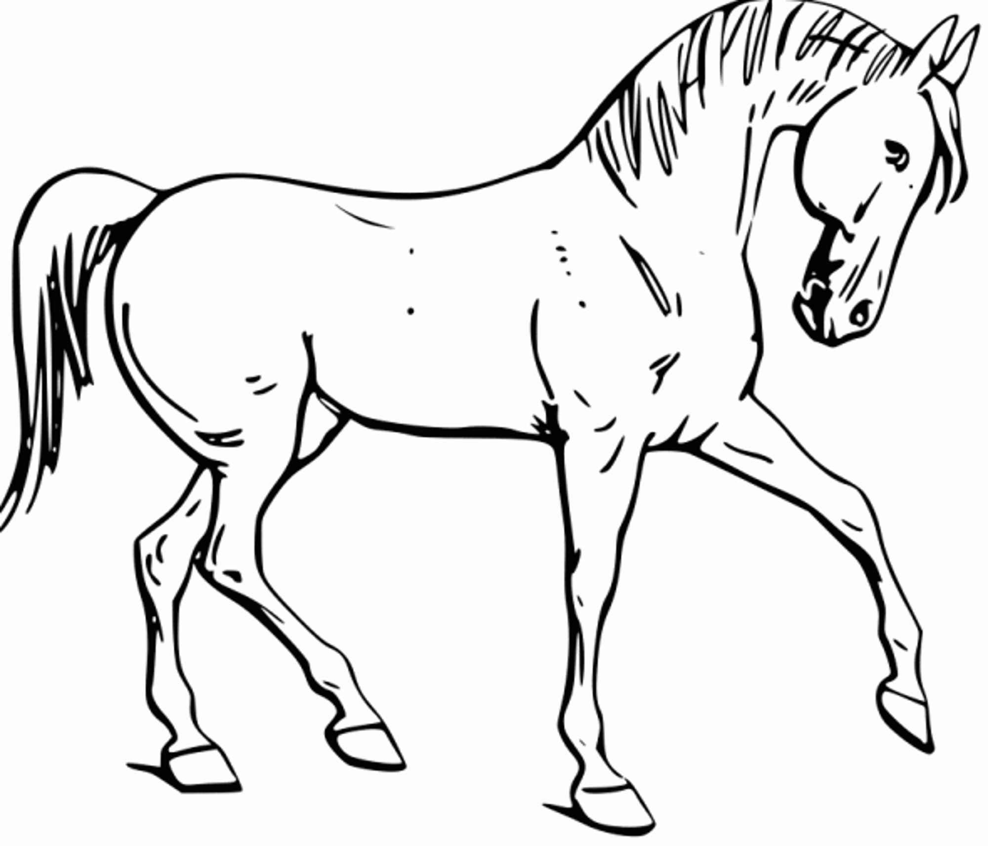 2000x1712 Fun Horse Coloring Pages For Your Kids Printable Printable