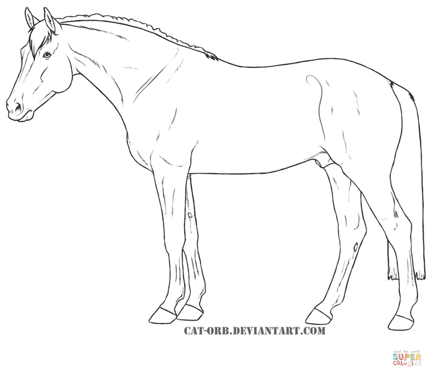 872x762 Hanoverian Horse For Coloring Page