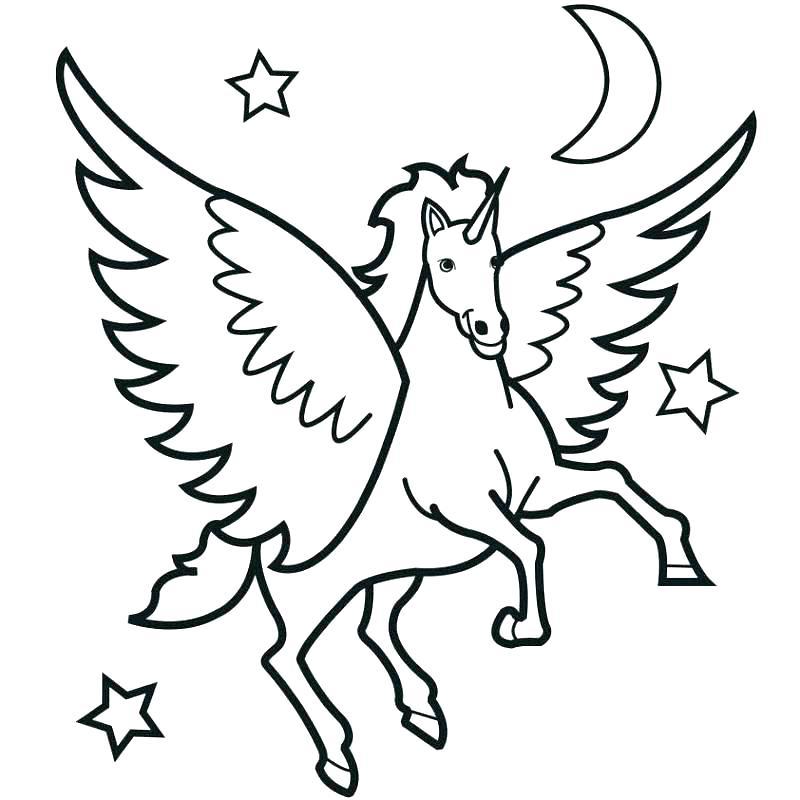 800x800 Horse Colori Pages Free Horse Colori Pages Free Decoration Horse