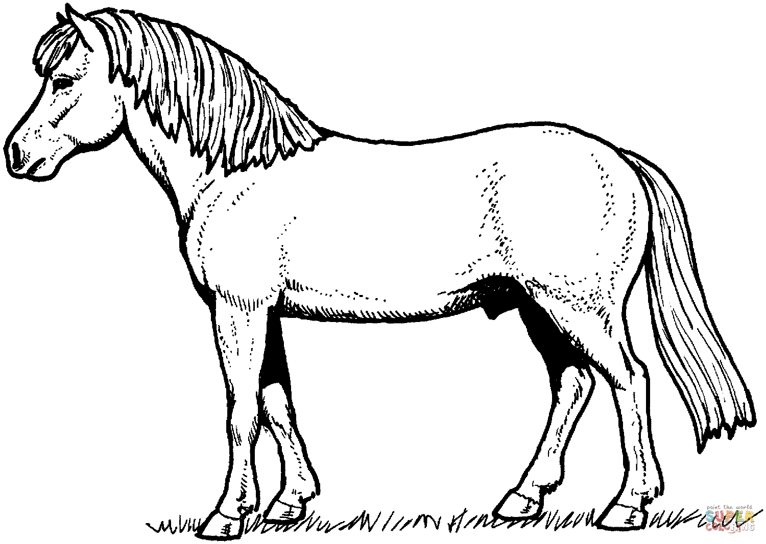 1500x1066 Horse Coloring Page Beautiful Appaloosa Horse Coloring Page Logo