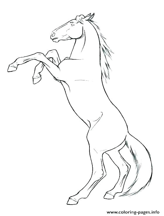 561x739 Pony Horse Coloring Pages Horse Jumping Coloring Pages Free Horse
