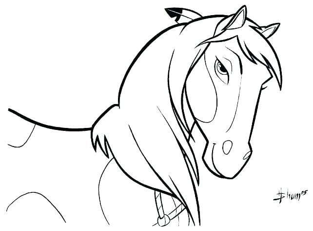 642x473 Realistic Horse Coloring Pages New Realistic Animal Coloring Pages