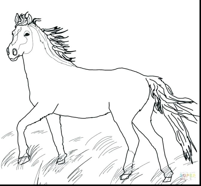 671x621 Coloring Paint Horse Coloring Pages Appaloosa Sheets Paint Horse