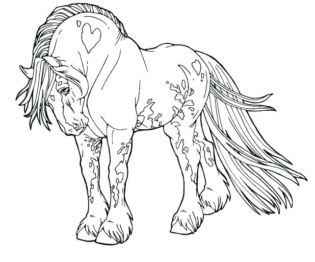 618x513 Free Horse Coloring Pages Murs