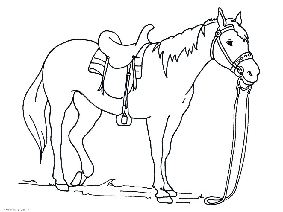 945x709 Mustang Horse Coloring Pages