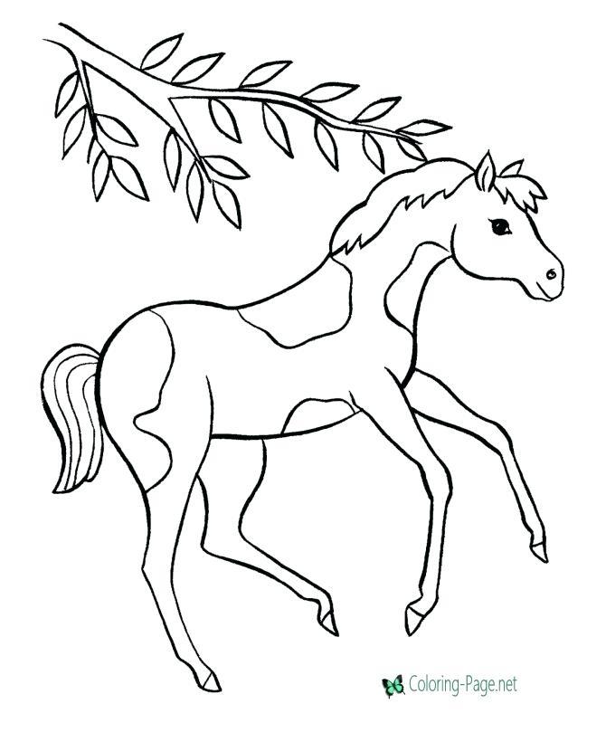670x820 Coloring Pages Horse Coloring Pages Coloring Pictures Of Horses