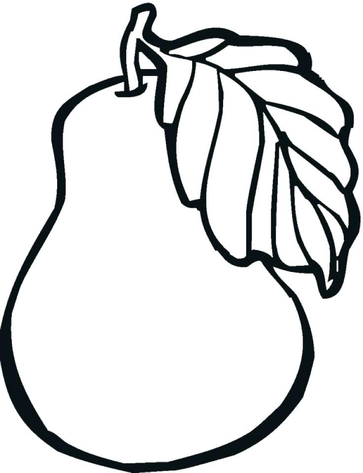 737x960 Apple Coloring Pictures Fresh Apple Coloring Page Apple Tree Leaf