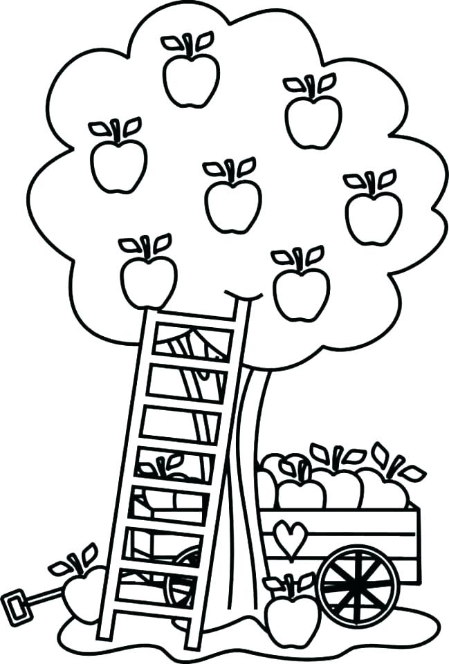 649x960 Apple Coloring Pages Apple Fruits Coloring Pages Fruit Coloring