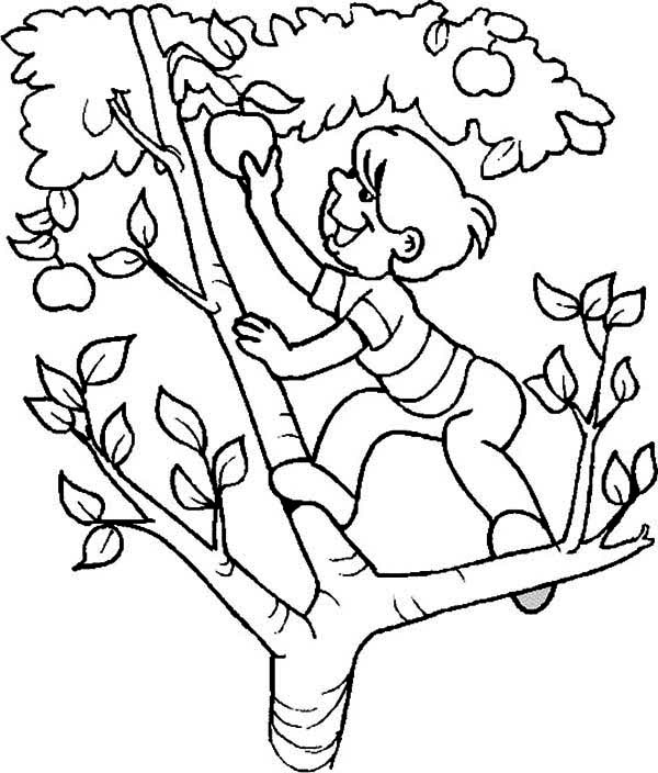 600x704 Fanciful Apple Tree Coloring Page Pages For Preschoolers