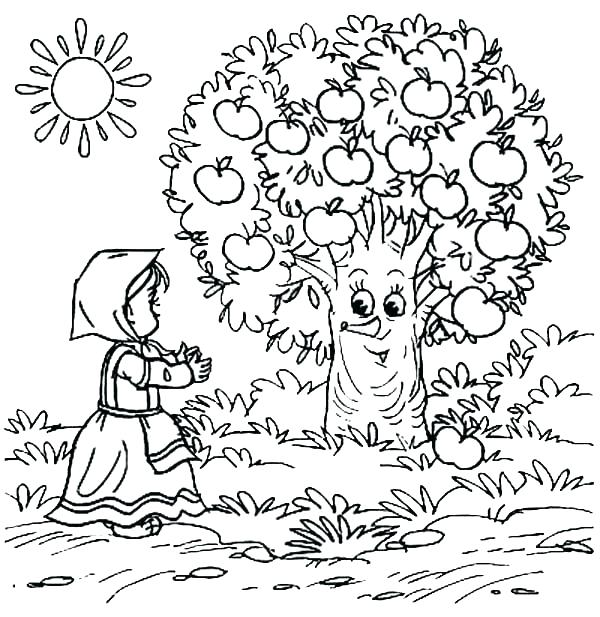 600x617 Apple Orchard Coloring Pages Tree Apples Page Nature Printable
