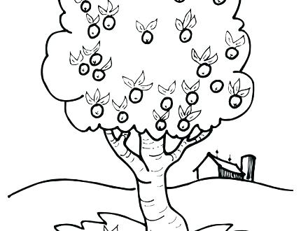 440x330 Apple Tree Coloring Pages Apple Tree Coloring Sheet Apple Tree