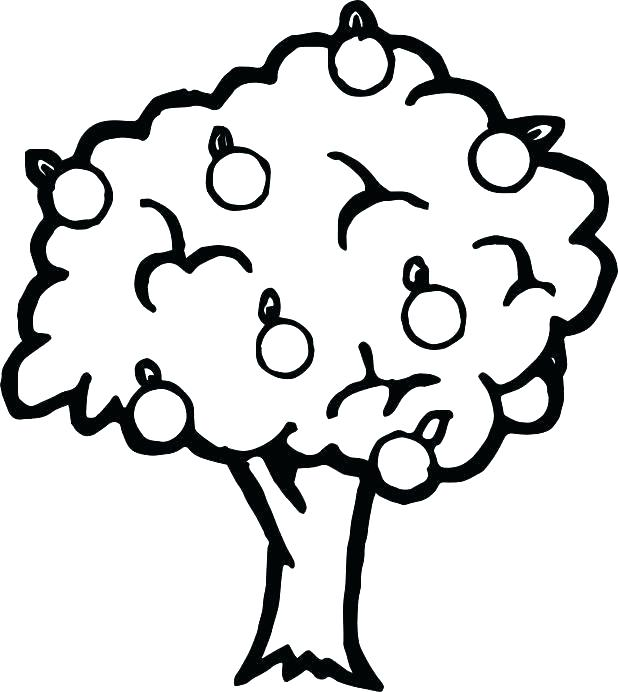 618x692 Apple Coloring Sheet Apple Tree Coloring Sheet Apple Tree Coloring