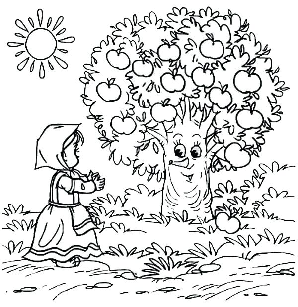 600x617 Apple Tree Coloring Pages Coloring Pages Apple Tree Best