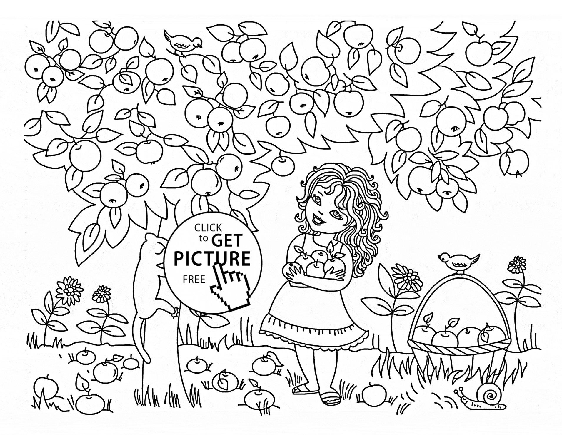 1911x1480 Coloring Pages Apple Trees Best Of Coloring Pages Apple Trees New