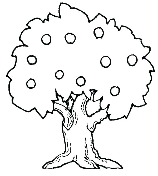 600x666 Coloring Pages Tree Coloring Pages Tree Tree Coloring Pages Fall