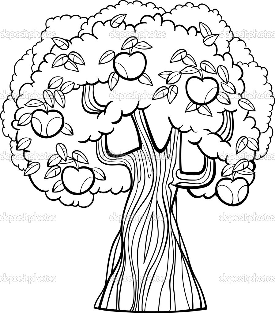 898x1023 Scarce Fruit Tree Coloring Page Apple Capricus Me