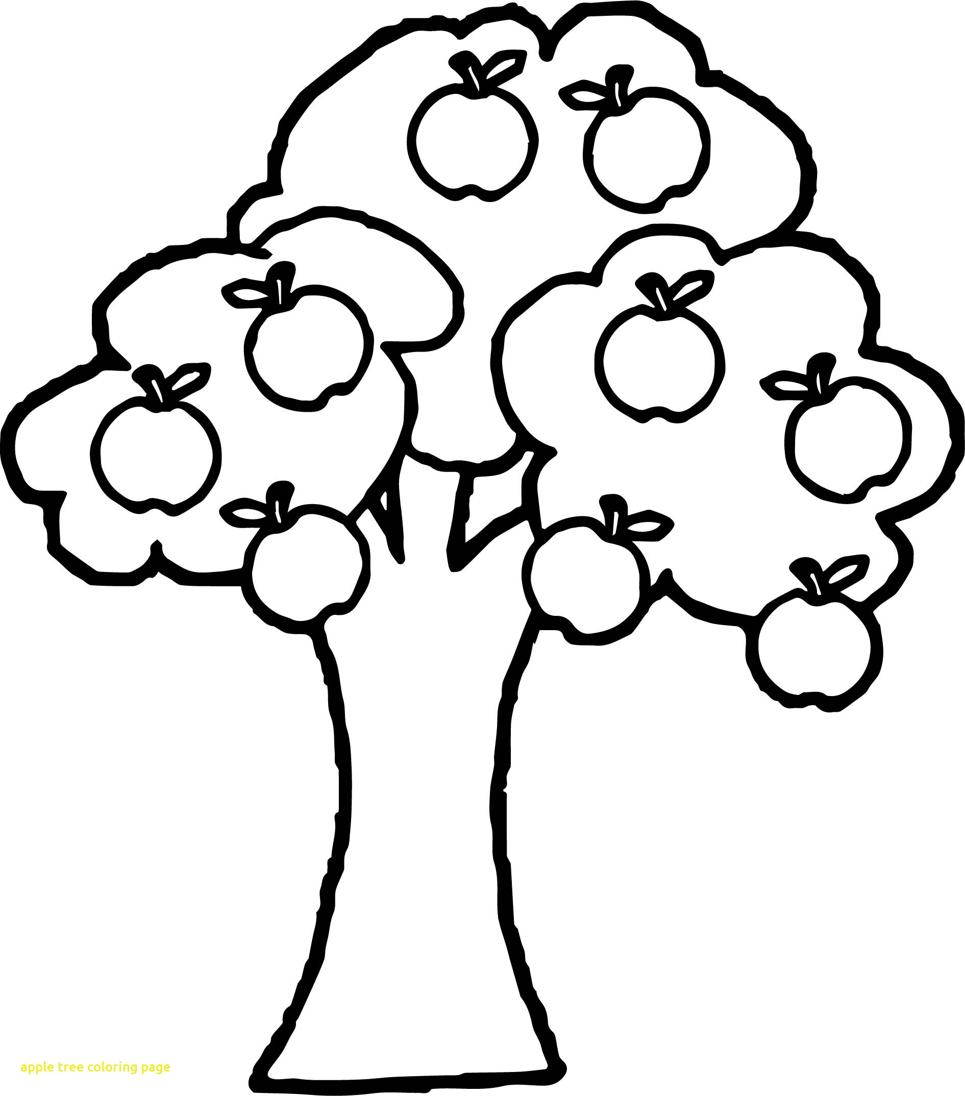 1891x2148 Apple Tree Coloring Page