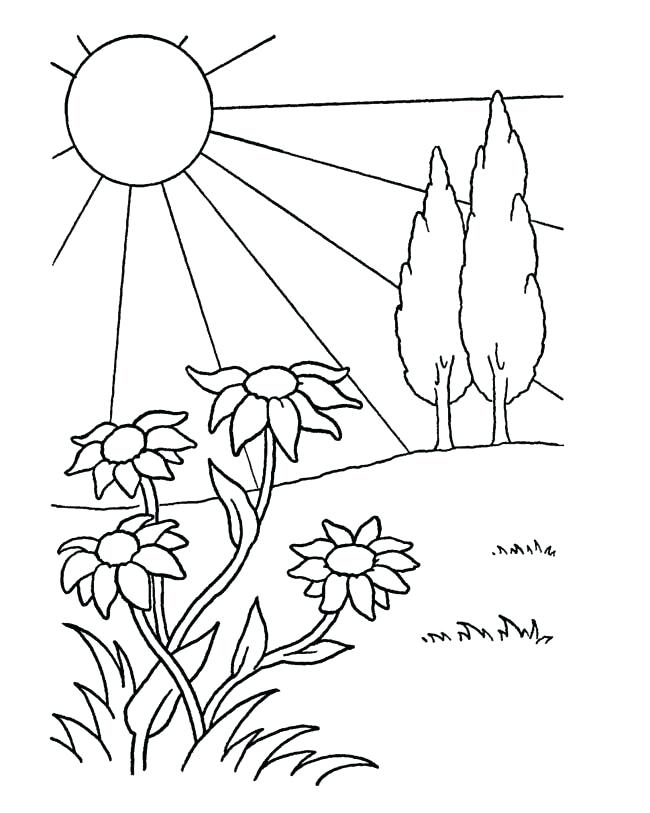 650x813 April Coloring Pages Detail Spring Coloring Pages April Fools Day