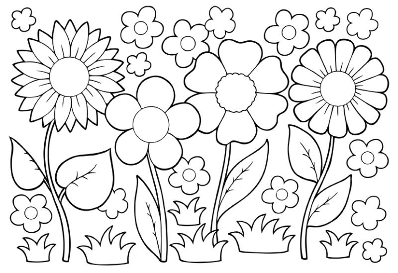 800x549 Noted April Showers Coloring Pages Bring May Flowers Free Bltidm