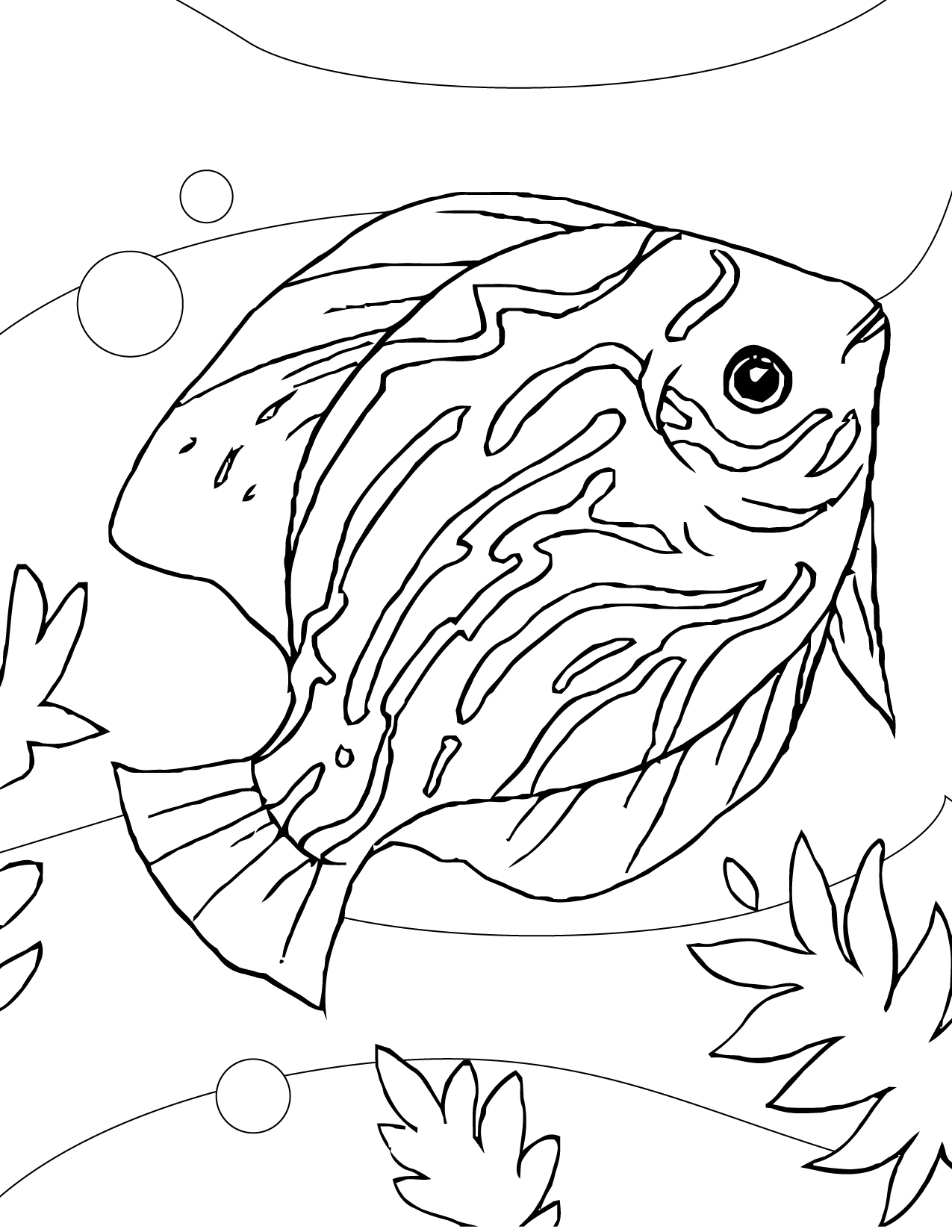 1275x1650 Discus Coloring Page