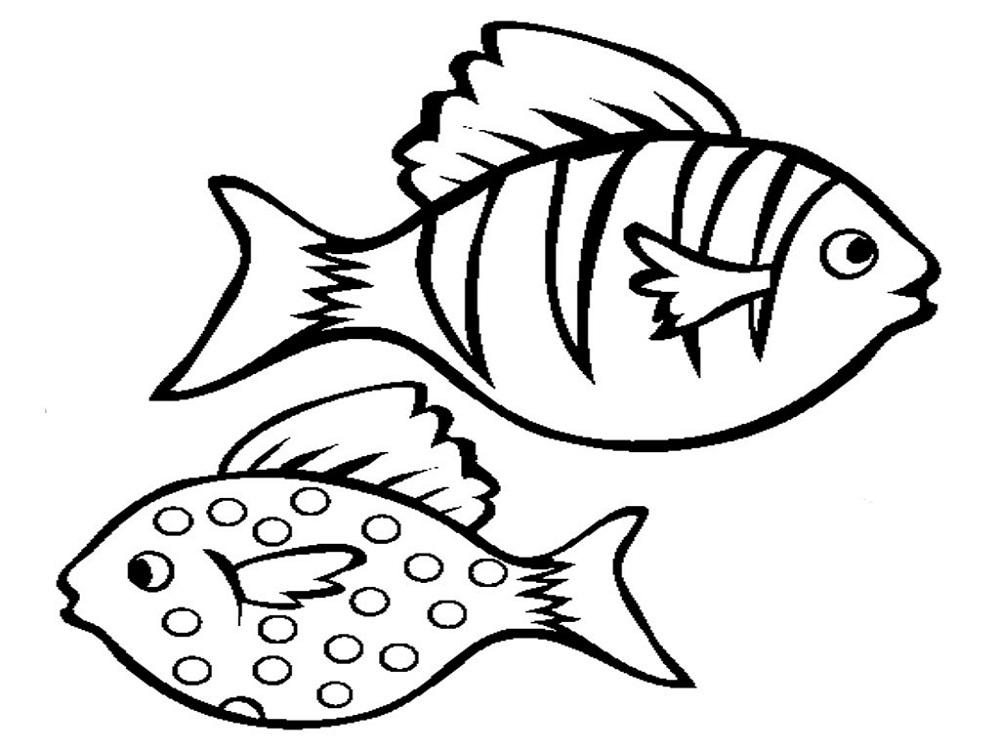 1000x750 Fish Color Pages To Print Activity Shelter Coloring Pages
