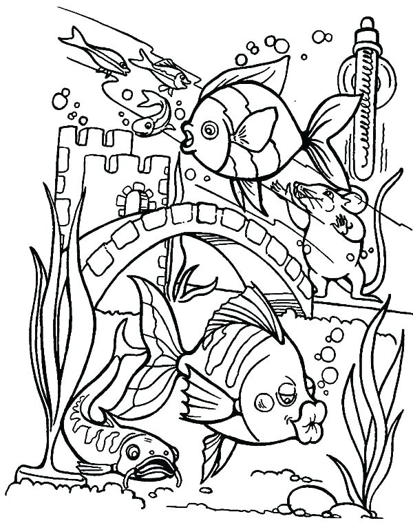 600x760 Fish Coloring Pages For Adults This Is Tropical Images Aquarium