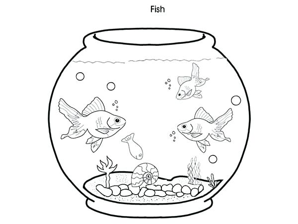 The best free Aquarium coloring page images. Download from ...