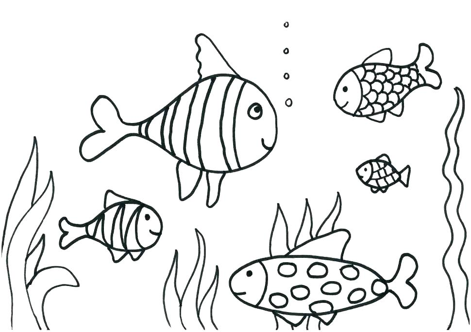 970x685 Fishes Coloring Pages Fish Coloring Book Together With Aquarium