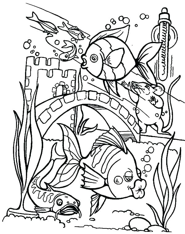 600x760 Blank Aquarium Coloring Page Printable Coloring Coloring Pages