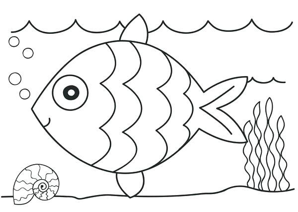 600x426 Coloring Page Fish Preschool Rainbow Fish Coloring Sheet To Print